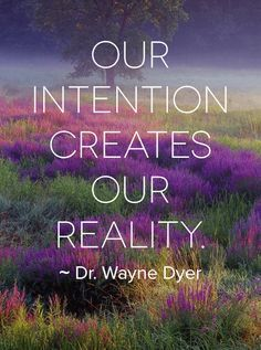 WD Intention purple